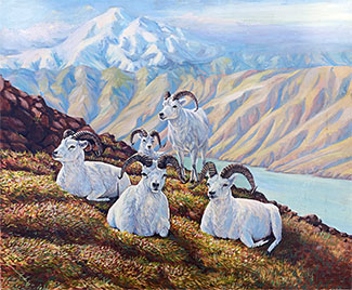 Dall Sheep oil painting