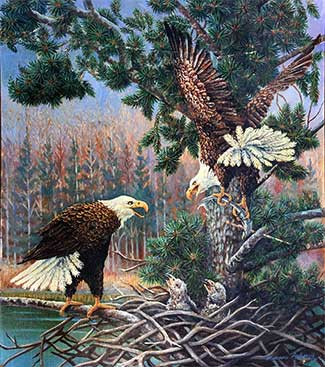 Bald Eagles oil painting
